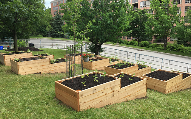 container gardens in school yard planted in wooden boxes Evergreen 5 ways to invest in school grounds that improves outdoor play and learning