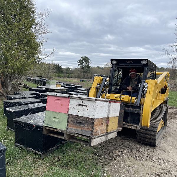 Loading bee hives at Bees Universe farm
