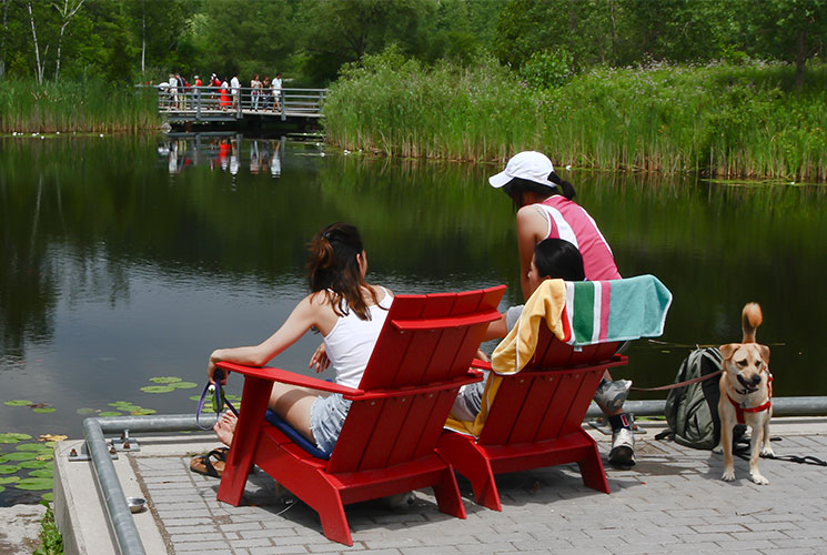 People relaxing on red chairs overlooking the ponds at Evergreen Brick Works. Image credit Stanley Shoolman.