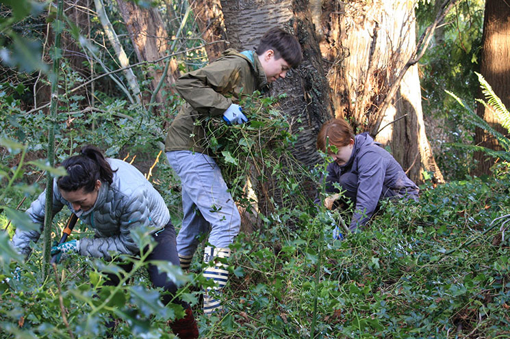 Members of Driftwood Cohousing take part in stewardship activities.