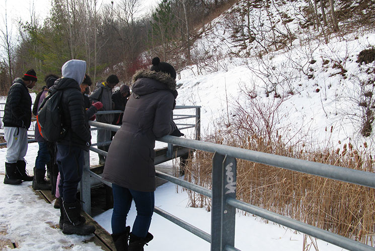 Students pausing on the bridge to take in an animal's natural habitat. Image: Arsen Kelesoglu.