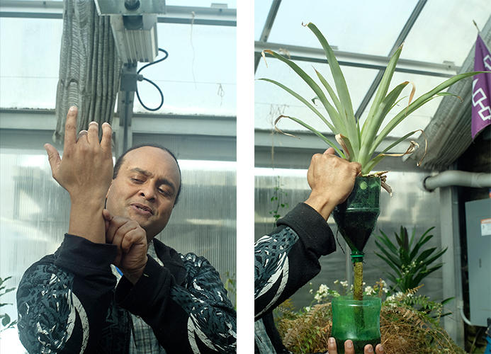 Isaac demonstrating how pineapples grow on his hand, him showing a hydroponics system out of a pop bottle