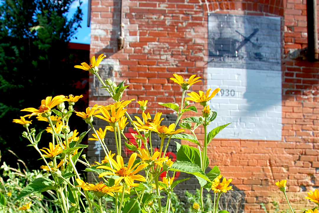 Bee in flowers with brick wall