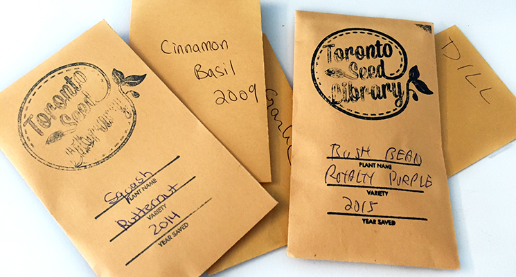 Seeds in packages at the Seed Swap - labelled with their plant name and year