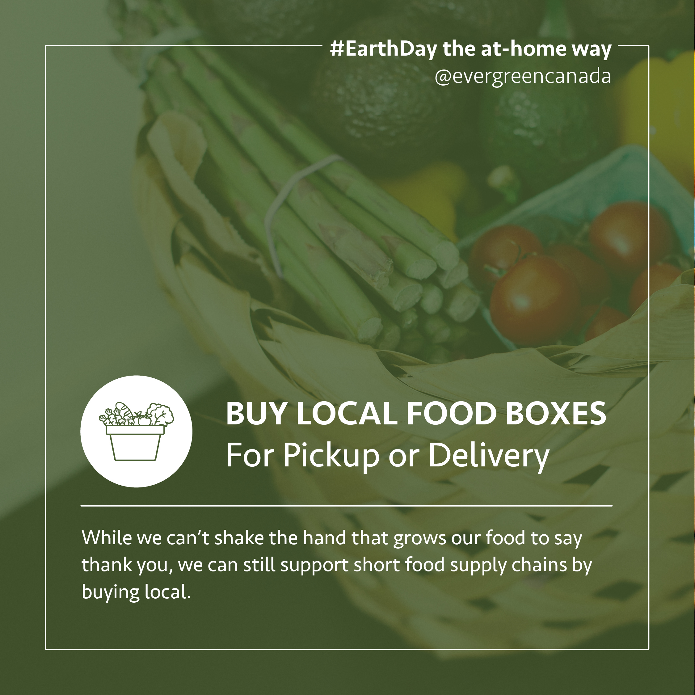 Buy local food boxes for pickup or delivery. While we can't shake the hand that grows our food to say thank you, we can still support short food supply chains by buying local