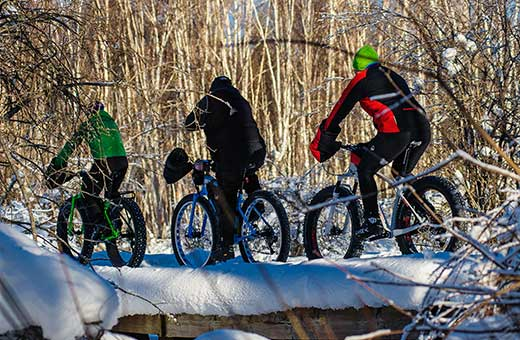 Three people riding fat tire bikes through the forest in winter.