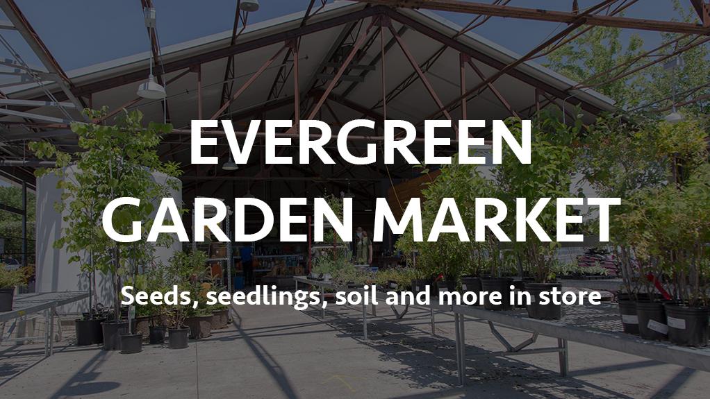 Evergreen Garden Market Banner Spring 2021