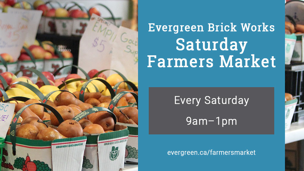 Evergreen Brick Works Saturday Farmers Market. Every Saturday 9am-1pm. evergreen.ca/farmersmarket.