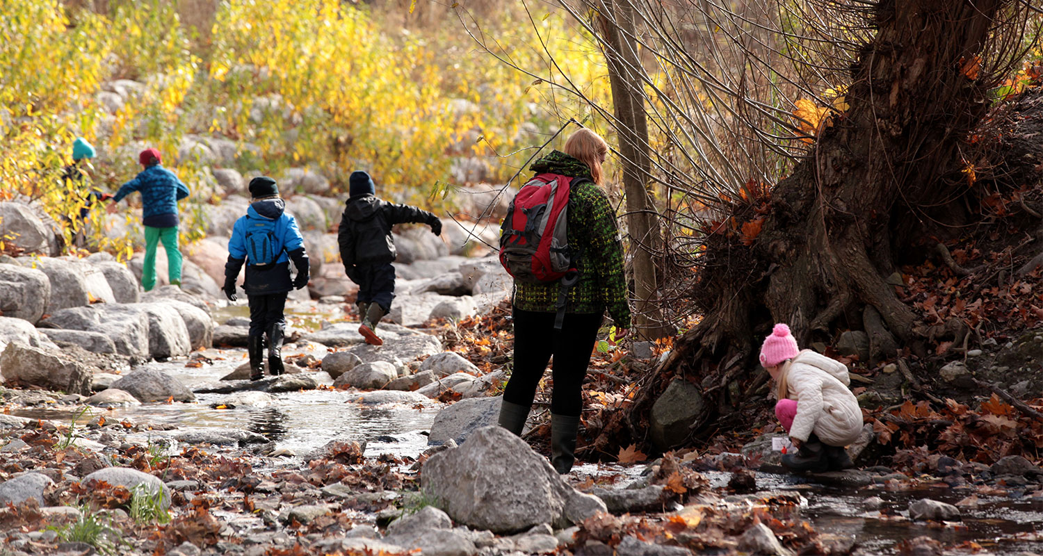 Children exploring the ravine / Joanne Quinn