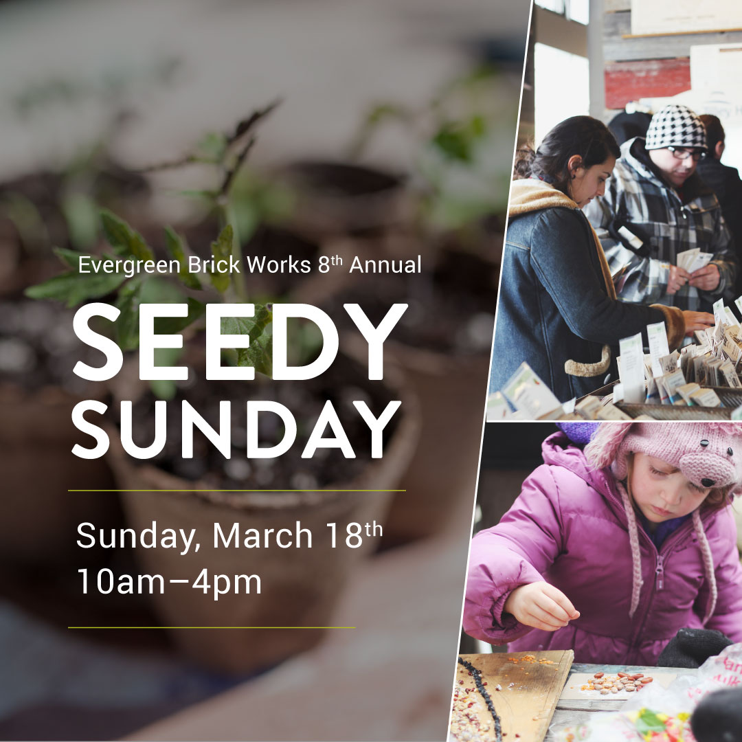 https://www.evergreen.ca/images/banners/SeedySunday_2018_WhatsOn_Mobile.jpg{description}https://www.evergreen.ca/images/banners/SeedySunday_2018_WhatsOn_Mobile.jpg