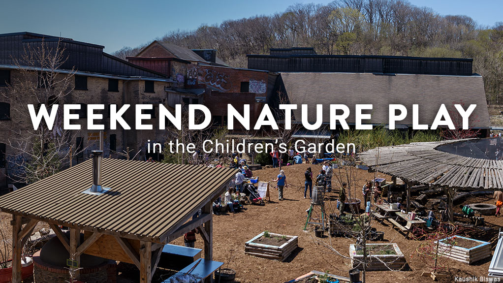 Weekend Nature Play in the Children's Garden Image: Kaushik Biswas