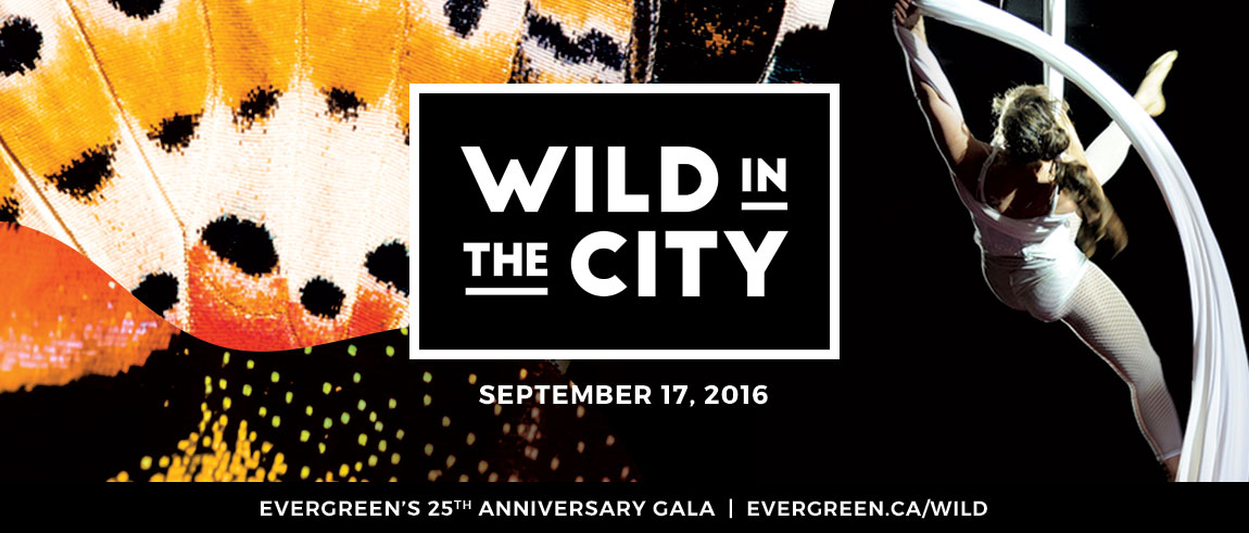 Wild in the City Gala Fundraiser