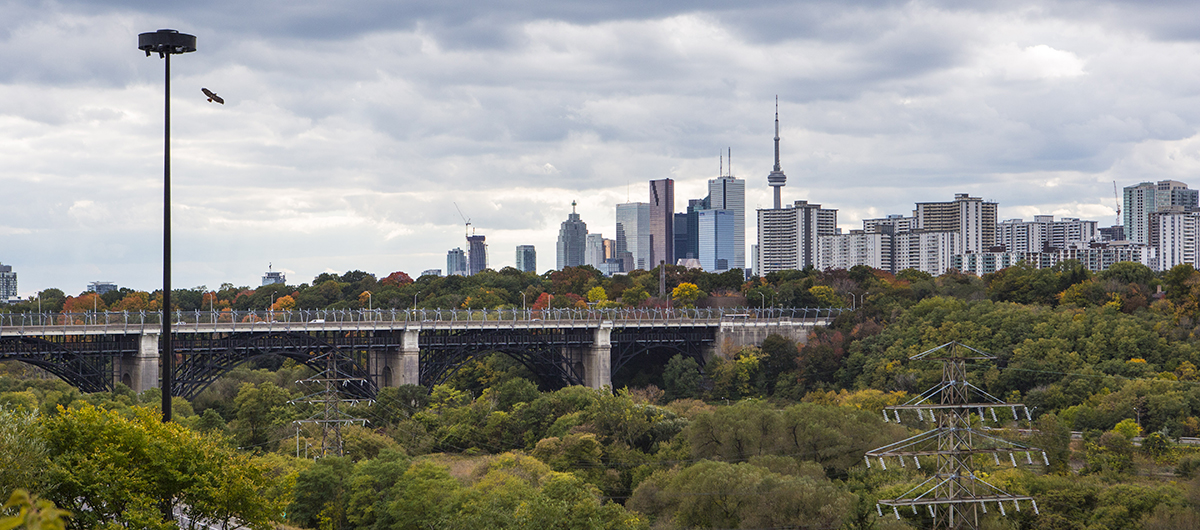 A view of the Bloor Viaduct nestled in the Don River Valley Park. Image: Geoff Fitzgerald