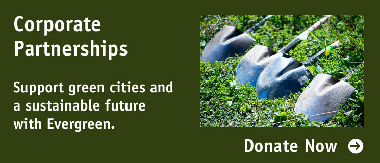 Corporate Partnerships: Support green cities and a sustainable future with Evergreen.