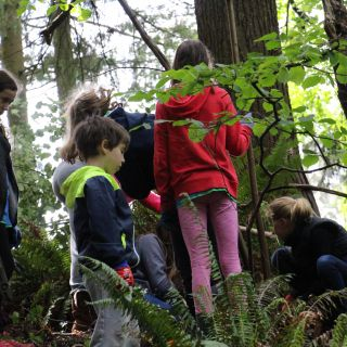 Large group of youth in the forest learning about the local ecology and conservation in BC. Image: Luz Alverado
