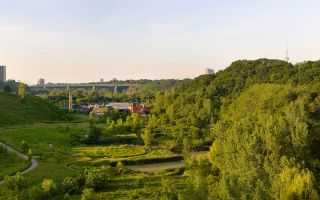 Evergreen Brick Works and the surrounding greenery at dusk. Image: Tom Arban