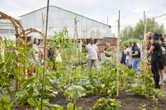 Urban Agriculture at Evergreen Brick Works