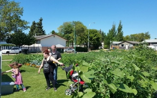 Community members enjoy visiting the school for garden club/Confederation Park School