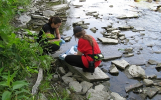 Evergreen Canada volunteers help test the water of a local creek through the Uncover Your Creeks program.