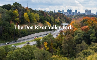 The Don River Valley Park