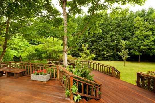 A large wooded deck wraps around a tree. Picking a tree planting site.