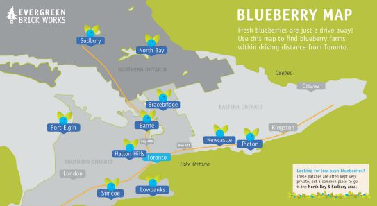 A map to blueberry farms within driving distance from Toronto.