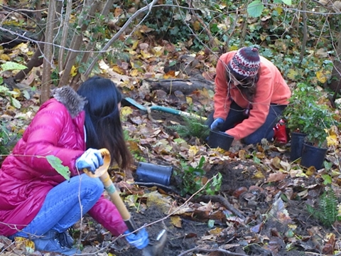 Two SMAS volunteers doing stewardship in Renfrew Ravine. Photo: Evergreen.