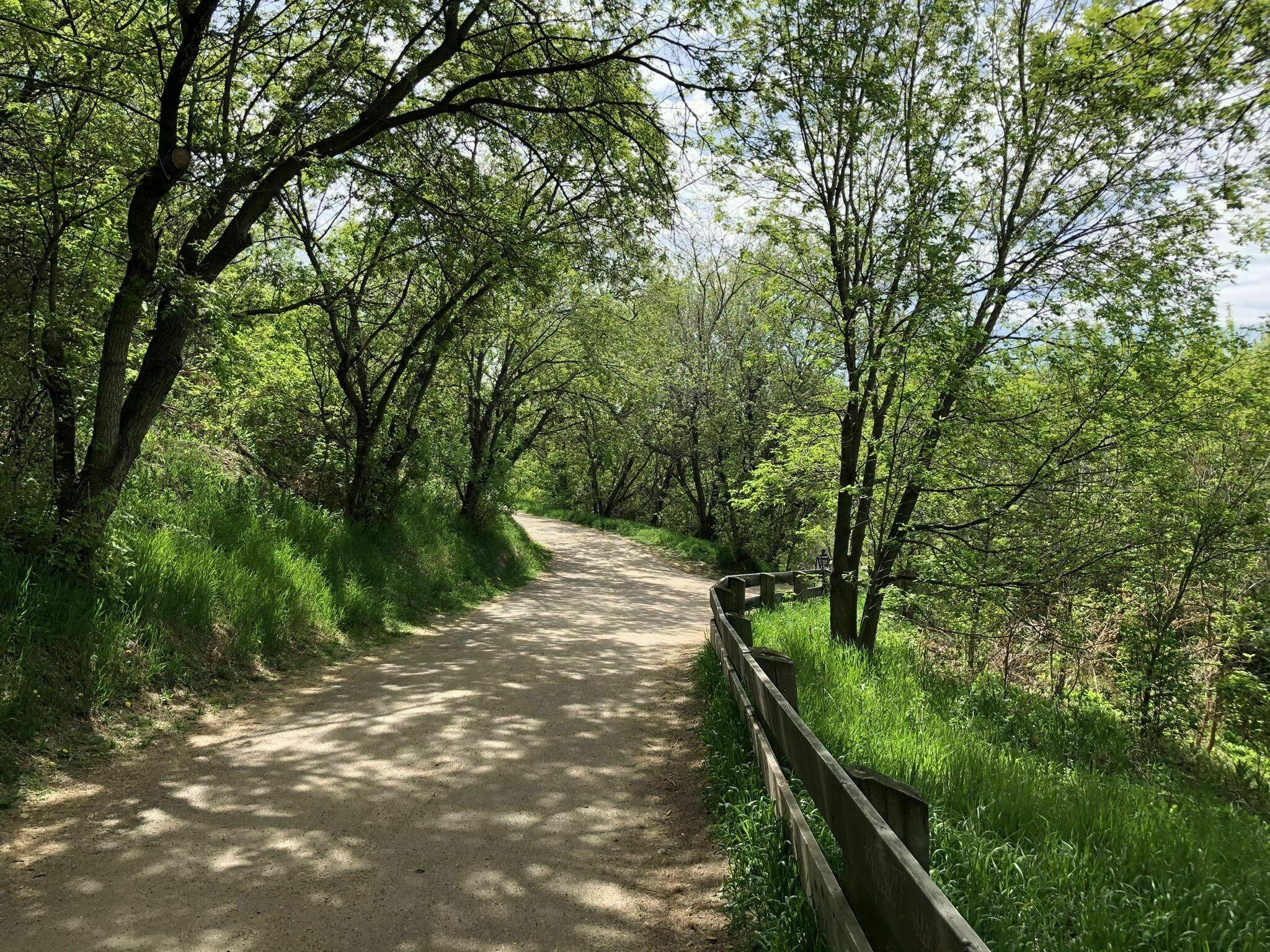 Edmonton's River Loop Trail