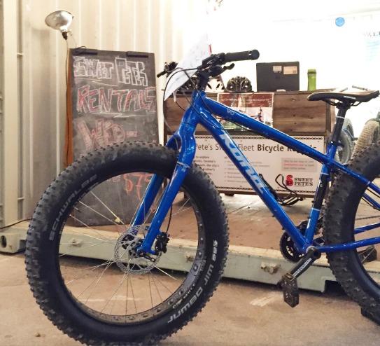 Fat bike.