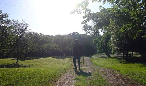 A man walks on a country road with a walking stick.