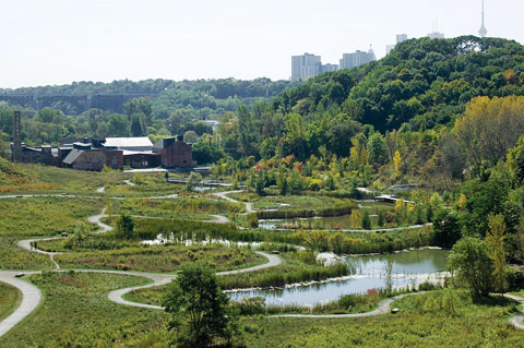 Weston Family Quarry Garden (then Don Valley Brick Works Park) in 2005