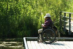 Wheelchair user visiting the Quarry Garden