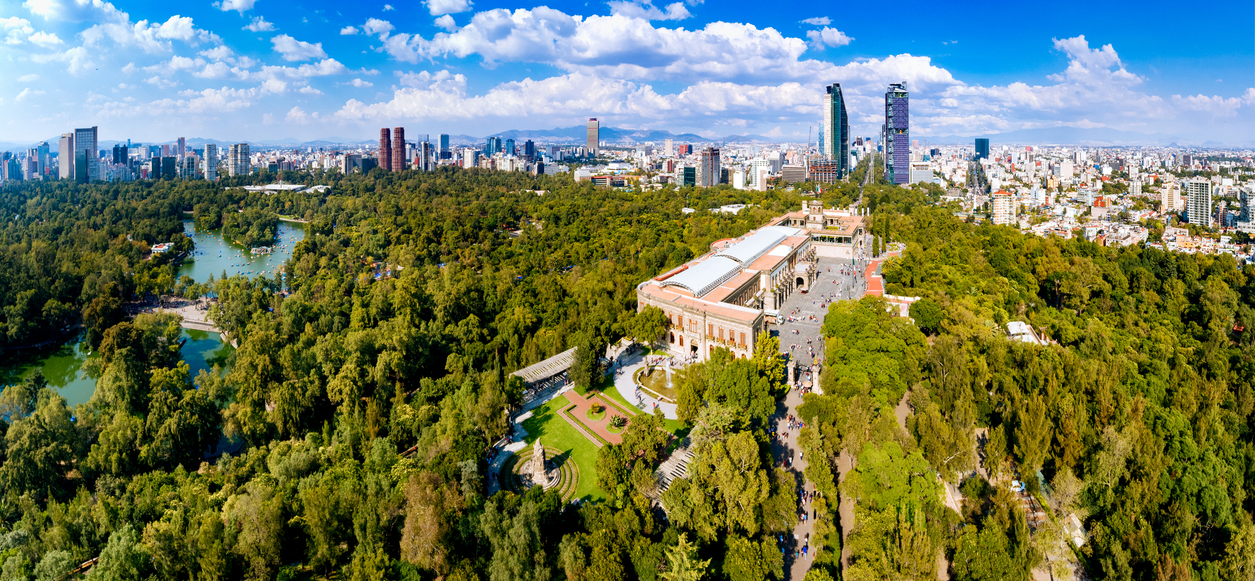 An expanse of forrest, with Mexico City in the background