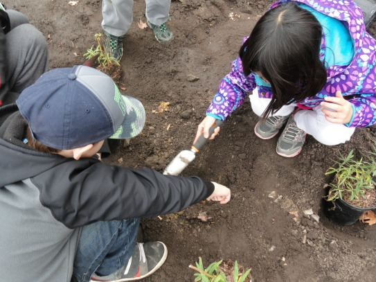 Students from Agincourt Public School getting ready to help plant the schools rain garden to reduce stormwater runoff on their school grounds. (photo: Evergreen)
