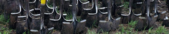 Shovels ready for planting. Photo: Lori Harrison.