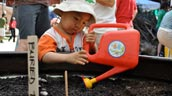 A young boy waters plants in a pot.