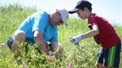 A man and young boy pull invasive plants at a stewardship event in Calgary.