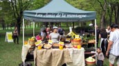 Les Amis de la Montagne's tent at Biodiversity Day planting in Montreal. Photo: Evergreen.