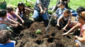 Students at Westmount school begin greening their schoolground. Photo: Evergreen.