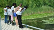 Youth from Take BAC with Evergreen staff watch for wildlife in the pond. Photo: Vera Gillman.